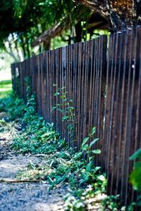 Idées propos Isolement avec une clôture de cèdre
