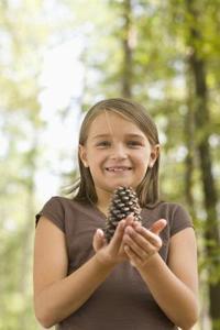 Comment faire cônes de pin cirées