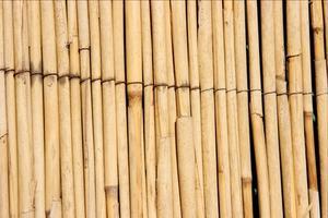 Comment faire pour installer une clôture Reed cours Chain Link