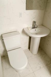 Produits naturels pour détartrer une toilette