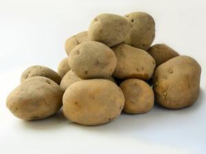 Quels légumes poussent dans un sol acide?