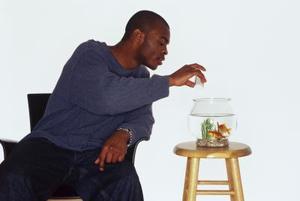 Comment garder bébé Platy poisson vivant