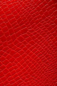 Comment pulv riser de la peinture un effet peau de serpent - Peinture effet serpent ...