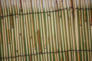 Idées pour une clôture de protection autour d'un patio Dans un Jardin clos