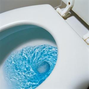 Comment déboucher toilettes trous Rim