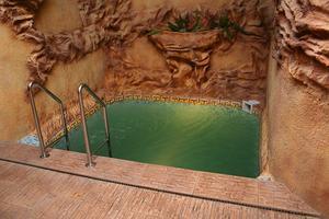 Comment faire pour supprimer les algues noires de la piscine