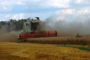 Pesticides et machines d'occasion pour la croissance de blé