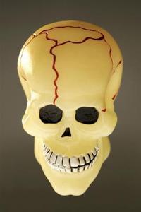 Comment Cast crânes avec des moules en silicone
