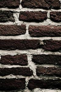 Comment nettoyer la moisissure verte De Briques
