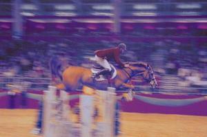 Comment construire des cours de saut simples pour chevaux