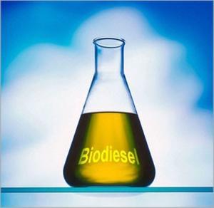 Comment faire une course camion diesel sur les biocarburants