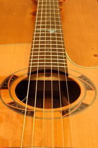 L'histoire de la guitare Cordes