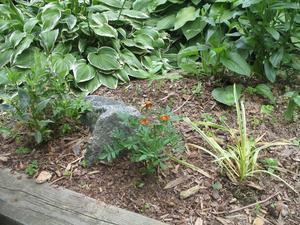 Idées pour l'aménagement paysager petits jardins