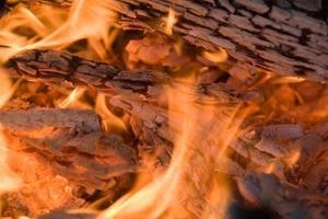 Comment faire un feu de bois dans un Barbecue Pit