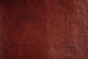 Comment vérifier la qualité de cuir