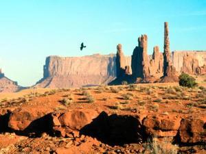 Caractéristiques géologiques d'un paysage désert