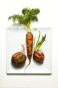 Comment enlever la cire sur les légumes racines