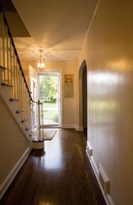 Fix maison pour rayures Wood Floors