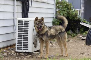 Comment puis-je installer la boîte Déconnecter pour une unité de climatisation?
