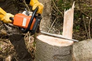 méthodes d'abattage d'arbres