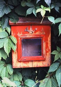 Fleurs à planter Environ une boîte aux lettres