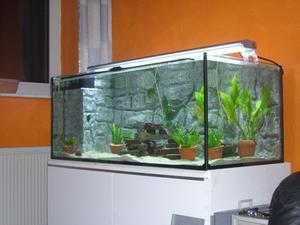 Comment faire un silencieux pompe à air pour un Fish Tank