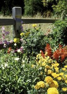 Comment créer un lit de fleurs devant une clôture