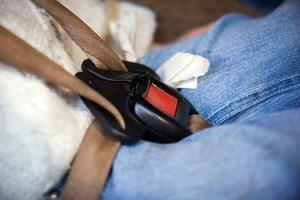 À propos de ceintures de sécurité sur les karts