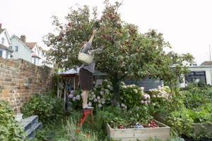Comment faire Permaculture Jardin Lits