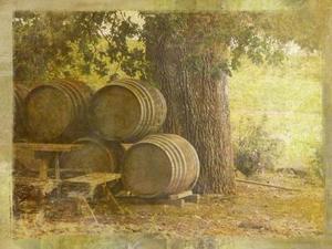Comment prep et vernir un tonneau de vin