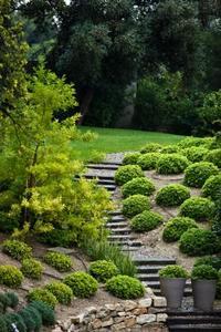 Idées pour l'aménagement paysager avec des pentes abruptes Backyards