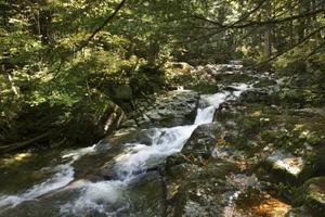 Comment trouver le substratum rocheux dans un ruisseau