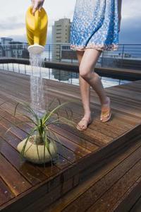 Les meilleurs Vis pour une terrasse de la piscine