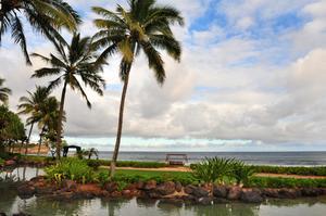Journée thématique hawaïenne pour les maternelles