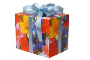 Anniversaire Idées cadeau pour un 12-Year-Old