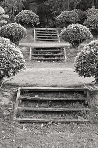 Comment construire des marches du sol sur une colline