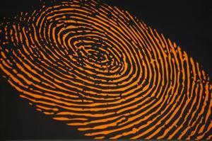 Idées de projets scientifiques propos des enquêtes criminelles