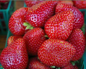 Comment servir fraises sur un plateau de fruits