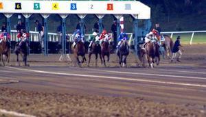 Comment calculer les chiffres de vitesse pour les courses de chevaux