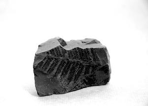Comment faire bleuissement liquide cristaux de charbon