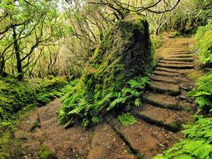 Comment construire des marches dans une colline
