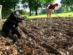 Quelle est la différence entre la couche arable et Loam?