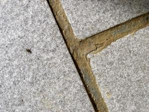 Step-by-Step Couché Slate carreaux sur une dalle de béton